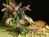 Натюрморт, цветы, лето, композиция