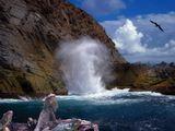 Галапагосские острова.Самым поразительным отличием Галапагос ото всего мира является - отсутствие страха животных перед человеком.