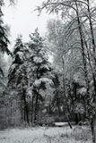 москва..21 ноября