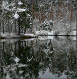 из старого, снега нет в Москве((