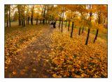 Парк Победы. Москва. Осень.
