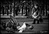 голубка белый голуби девушка улыбка настроение радость эмоции конраст парк птицы