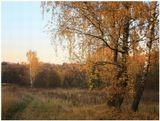 2009 г. Октябрь. Усадьба Суханово.