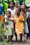 Индонезия, Папуа Новая Гвинея, 2009