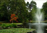 Ванкувер. Ботанический сад.