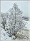 пейзаж, Архангельск, зима, снег, природа