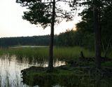Озеро Ласковское Рязанская обл
