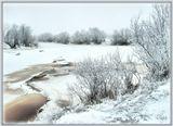 природа, пейзаж, река, ивы, зима