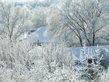 зима,снег,иней,дерево,крыши,природа,свет