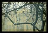 Как это не удивительно, но 16 декабря в Одессе все таки началась зима...Город в пробках...Власти в шоке...Кто бы мог подумать :)