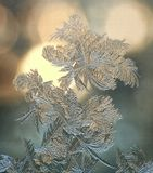 """Из серии """"Морозные узоры"""". Всегда новые, всегда интересные Мороз, узор, стекло, зима"""