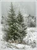 пейзаж, зима, природа