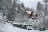 Выпал долгожданный снег. На Рождество! Швеция сегодня