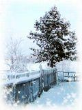 Дорогие друзья ленсартовцы!!!Пусть Новый год принесёт ВАМ только хорошее!!!