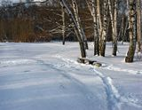 В парке Сокольники