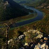 Река ЦрнойевичаЧерногория