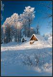 Питерская губерния, окрестности  г. Луги, ну очень сильный мороз :-)