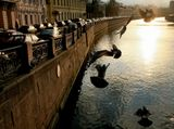 С-Петербург, город, голуби, река, канал.