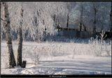 Сегодяшняя зима в Москве