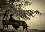 Фотография сделана в Царицынском Парке