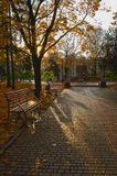 Утро, город, осень, солнце, сквер, скамейка