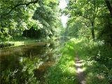 Старый питьевой канал Кёнигсберга- Ландграбен, в конце лета.