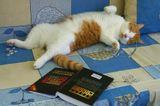 Очень это утомительное занятие-изучать умные первоисточники.