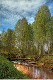 Снято в мае в Новгородской области