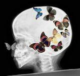 ....ну. с Днём, тебя, Игорь! ....урря!:))Дорогой Друг! Поздравляю от всей-всей души Тебя)))) И что б творческий процесс не застаивался в мозгу, а вырывался наружу))____а именинник у нас тут http://www.lensart.ru/user-uid-5cc.htm :)