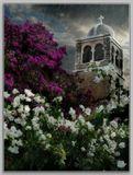 Израиль в  30 км под Тель-Авивом- монастырь молчальников...