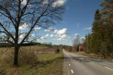 Май. По дороге домой. Пешком. Швеция.
