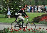велосипед, Франция, юмор, реконструкция