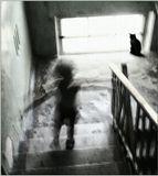 ...Больше жизни я, наверное, потеряю. Остальное - под хвост коту.Приходите. Дверь моя нараспашку, а дом весь улетел в трубу....(Д.Паташинский)______________в продолжение темы http://www.lensart.ru/picture-pid-31c94.htm