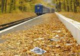 ОсеньВыброшенные фотопоезддождьрасставание