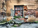 Некоторые окна Петроградской стороны ...