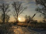 Тверь.окраина.зима-2010.мороз-17.