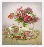 флоксы , цветы