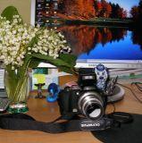 19 июля 1822 года появилась первая в мире фотография. Французскому ученому Жозефу Ньепсу удалось зафиксировать изображение с помощью света. В процессе создания снимка он испробовал многие материалы и остановился на лаке из сирийского асфальта, растворенного в лавандовом масле. Сегодня фотографии делают по другим технологиям, а для многих это занятие стало хобби. Всех моих дорогих и любимых фотографов поздравляю с праздником!!!
