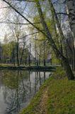 Рядом еще два пруда... Местные жители называют их Головинскими