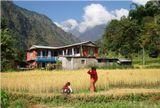 Непал, крестьянский домик в Гималаях.
