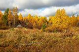 дом осень листья