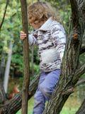 Спорим, я лазаю по деревьям быстрее тебя...