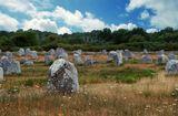 Эти камни неизвестно кем и когда установлены ровными рядами на французских поляхкамни поля Франция