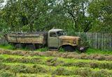 Беларусь, сено, ЗИС, грузовик, хлам, деревня, автомобиль