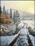 Прикрывало Солнце занавесь из снега.Все на свете плавно погружалось в сны...Еще будет долго длиться эта нега,А, казалось, веяло запахом Весны.-----------------------Ранняя осень в снежном убранстве. Бурятия.