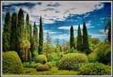 Хороший весенний день в Императорском саду,совсем рядом слышен шелест волн моря и Абалденный пяняще-чарующий воздух от которого по всему телу разносятся флюиды счастья,это одно из чудес света на нашей грязно-засоренной земле.