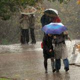 дождь люди зонты