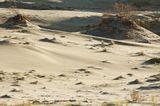 дюны, Куршская коса, песок