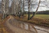 Осень,дорога,погода,времена года,Ярославль.