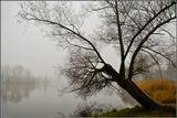 Екатерининский парк,Царское село